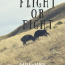 Flight Or Fight